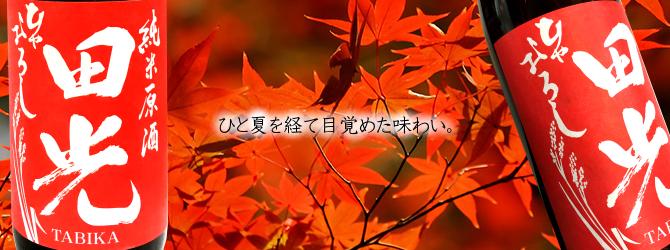 早春 田光 早川酒造  伊勢鳥羽志摩 特約店