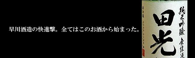 田光 早春 早川酒造醸 三重県 菰野 特約店 伊勢鳥羽志摩